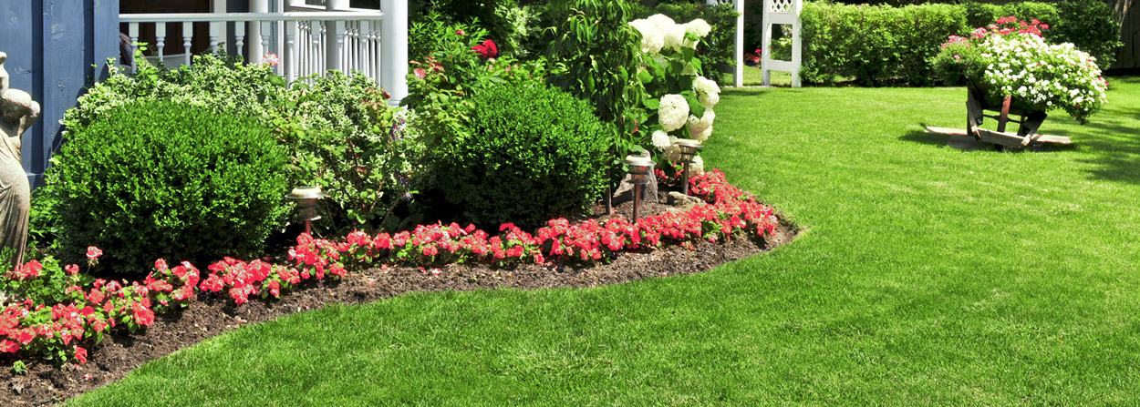 Vista Landscaping Of Wilmington, NC - Landscaping Wilmington NC Lawn Care, Landscapers
